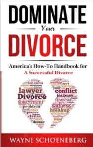 Dominate Your Divorce Wayne Schoeneberg